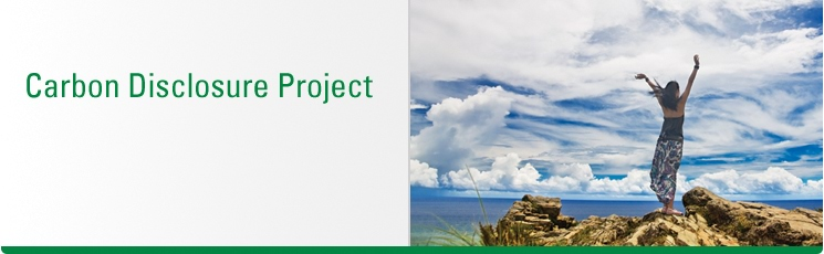 disclosure project Ifc project information portal inquiries subscription all projects search {{value ||home}} home access to information.